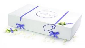 GownClean Economy wedding dress storage box