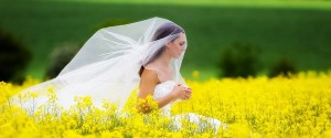 professional wedding dress cleaning