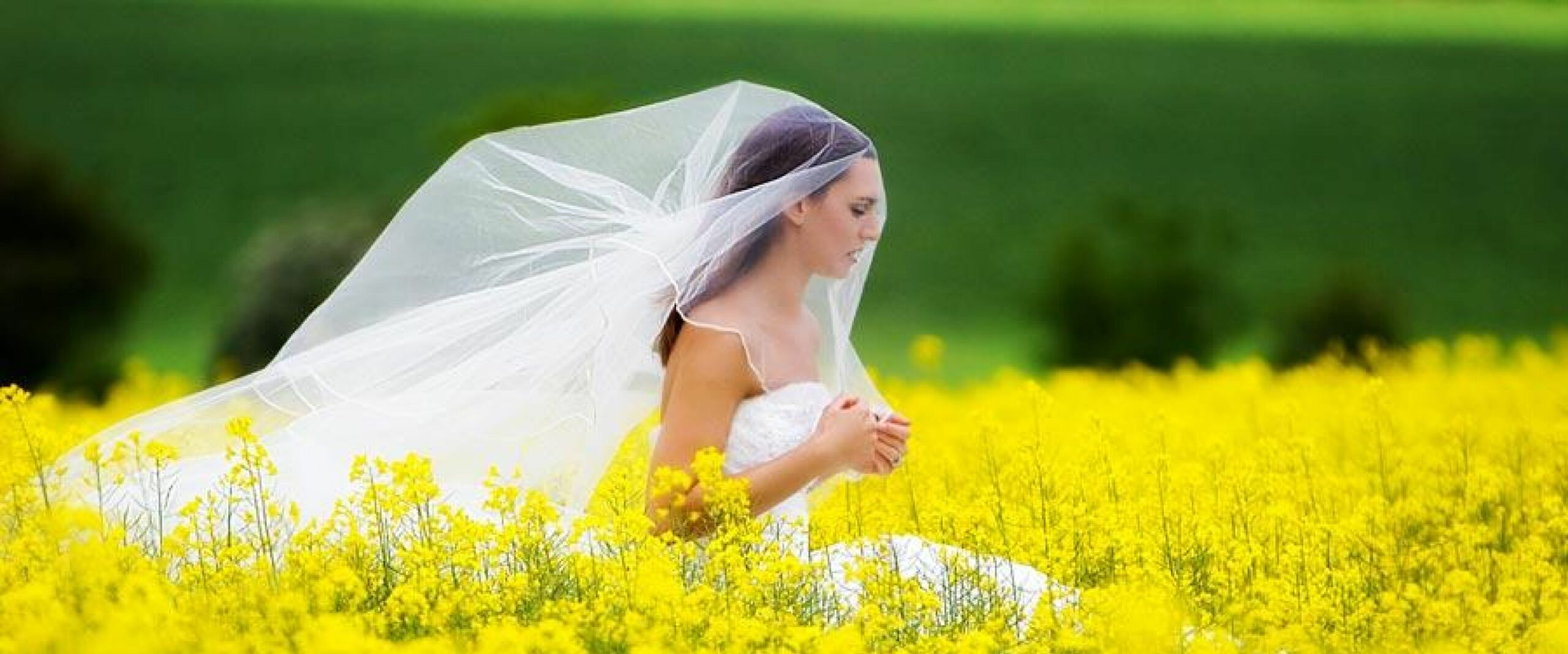 Wedding dress cleaning and boxing by GownClean Ltd.