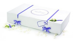 GownClean Economy wedding dress storage box